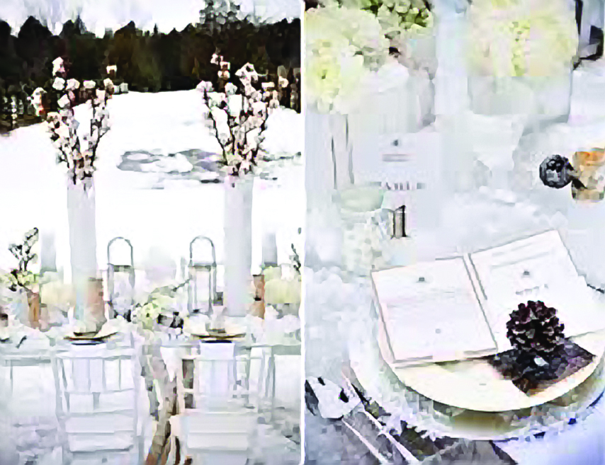 winter reception imagescnfzpfhb